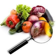 Nietolerowanie warzyw przez organizm