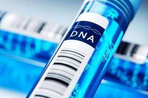 genetyczny test DNA