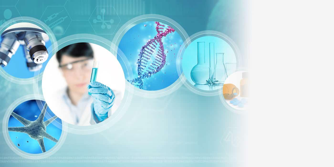 Panaceum - badania laboratoryjne