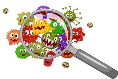zabiegi dożylne oczyszczające organizm
