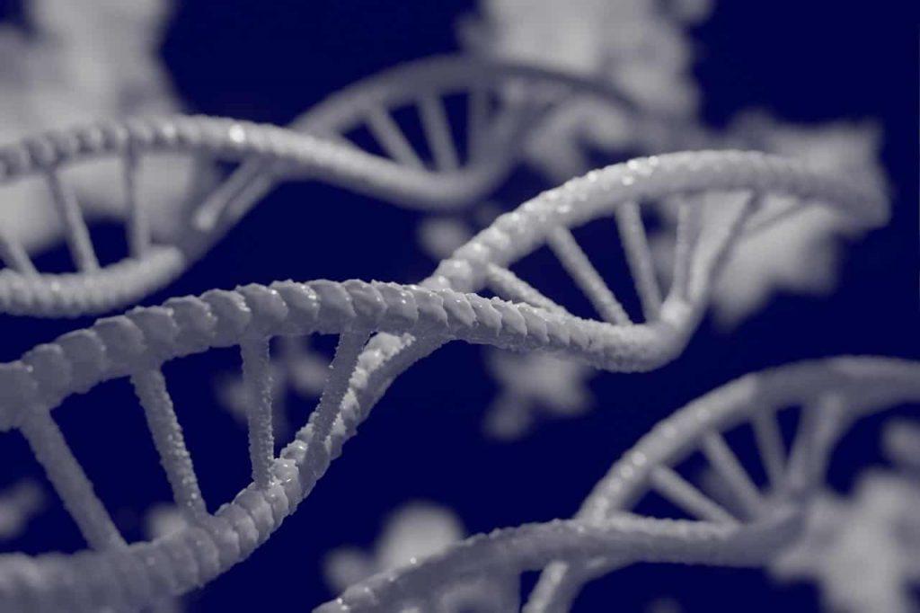 Testy genetyczne w Warszawie – sposób na odzyskanie dobrej formy